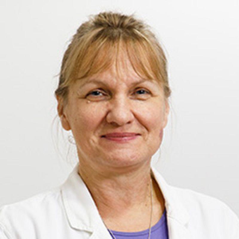 Dr Vesna Perišić